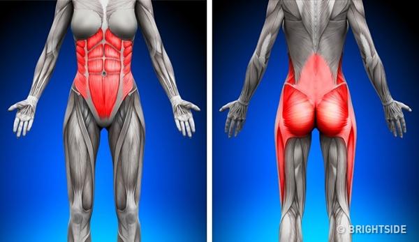 7 điều tuyệt vời xảy ra với cơ thể khi bạn tập plank đều đặn mỗi ngày
