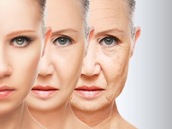 Lão hóa da là gì? Biểu hiệu và những cách ngăn ngừa lão hóa da hiệu quả?